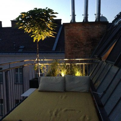 Vienna Rooftop at Night