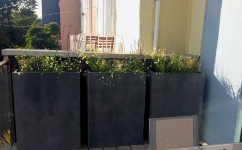 Bristol Roof Garden Planters