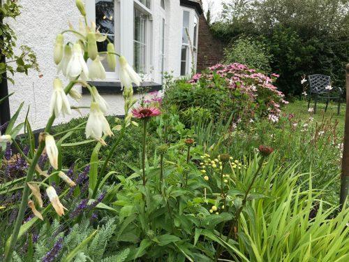Cottage Garden Planting Bulbs