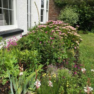 Cottage Garden Design Bristol