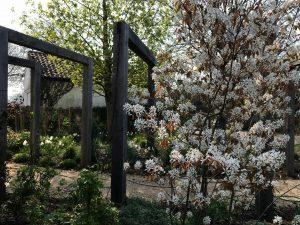 Country Garden Spring blossom