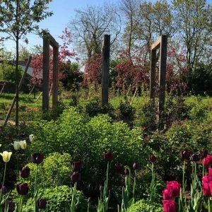 Country Garden Design Bristol