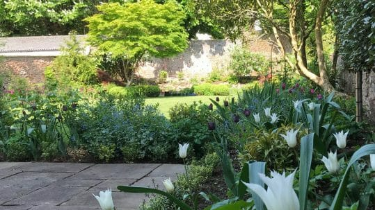 Formal Garden Design Bristol