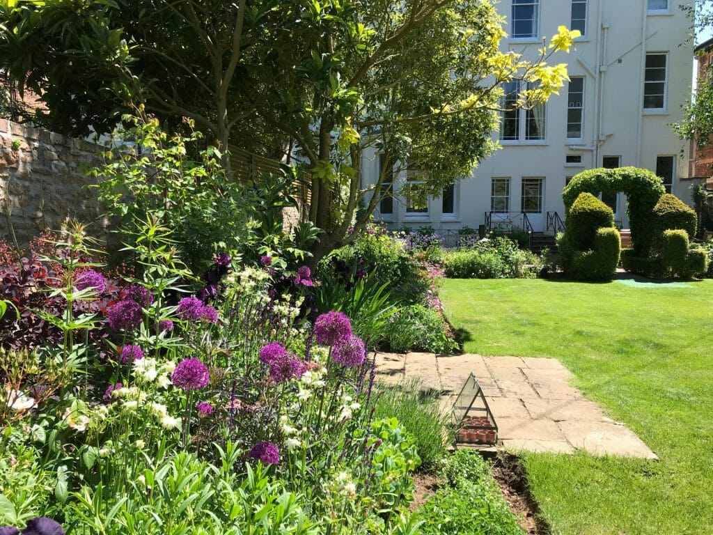Formal Garden Summer Iris