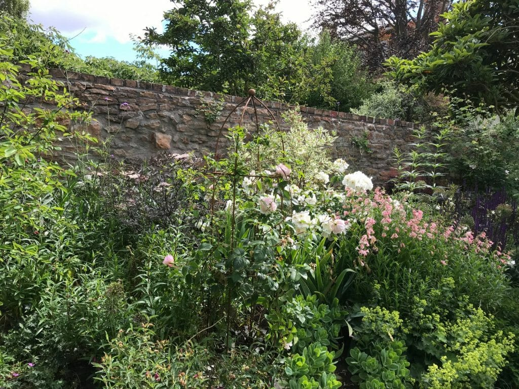 Formal Garden pink and white