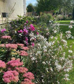 Historic Garden Long Borders