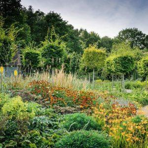 Reighton Wood Garden Design