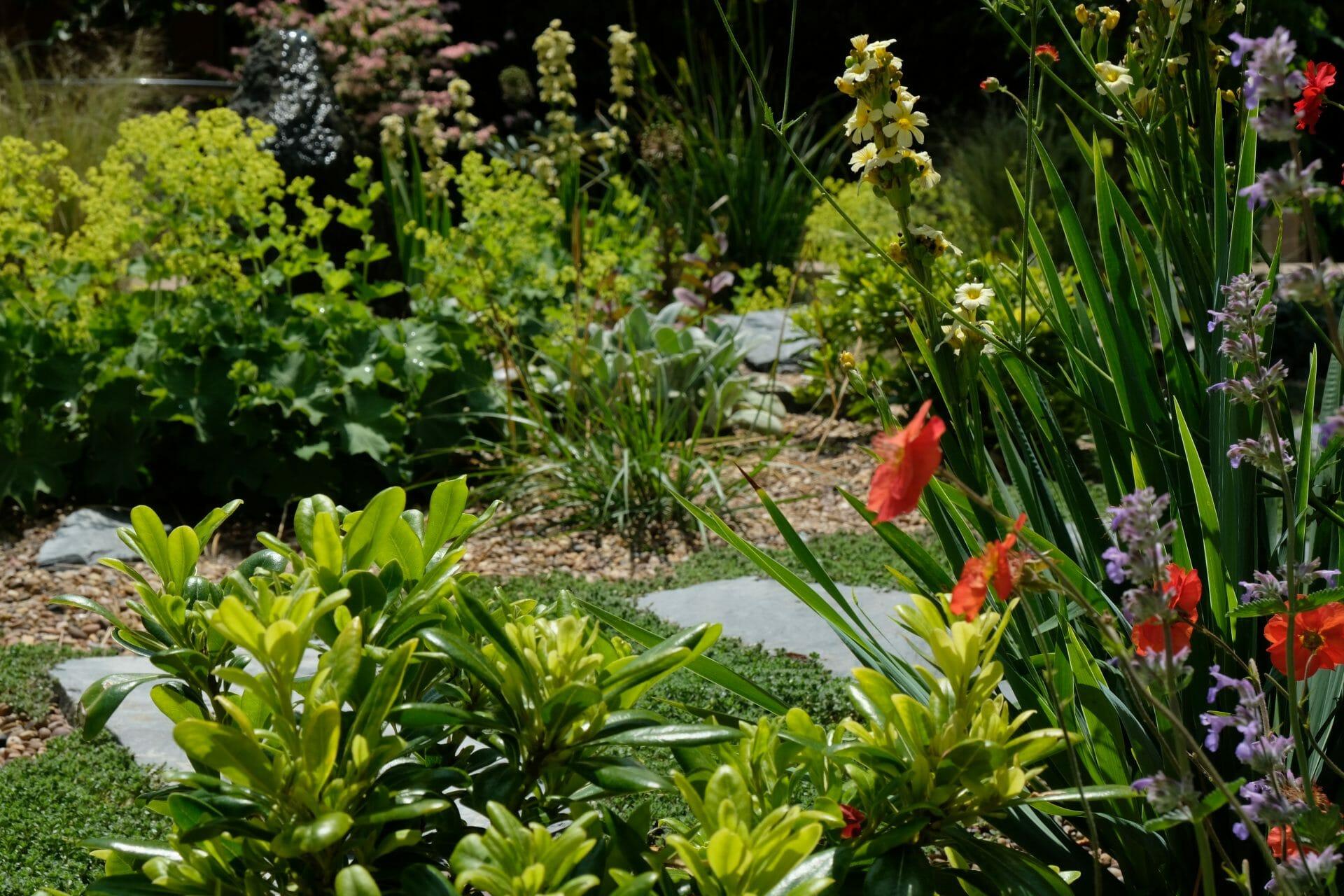 Garden Designer Chepstow